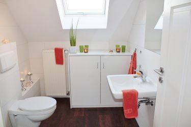 トイレ掃除を毎日やれば金運UP!?時短のやり方、場所と頻度!?